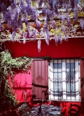 Bertamè Trattoria Milano - il giardino d'inverno